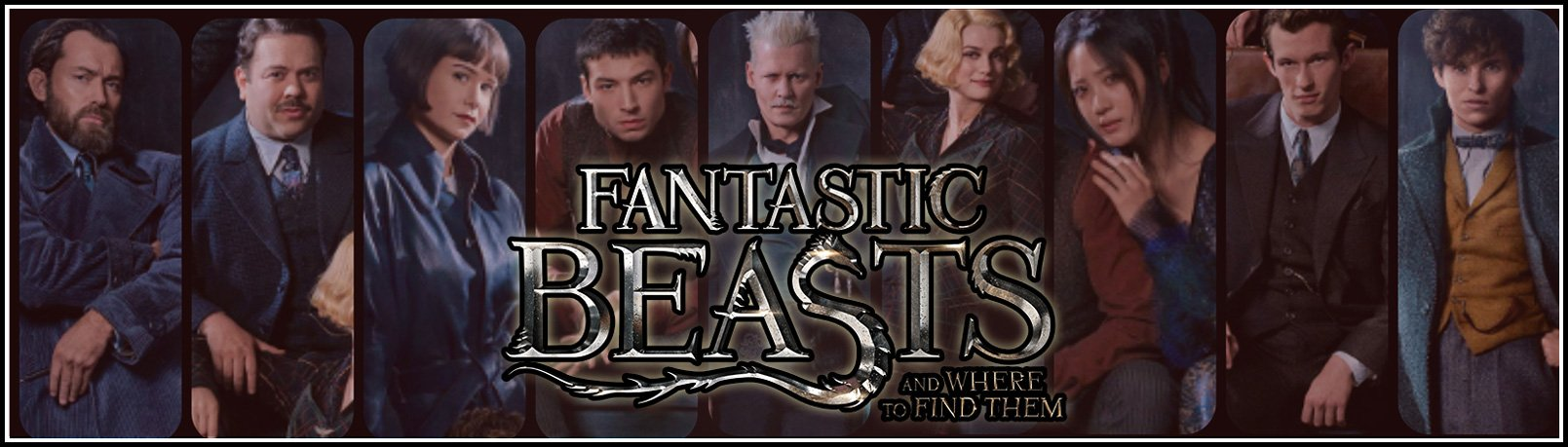 fantastic beasts jackets